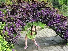 Arch expression (DannyAbe) Tags: arch newyorkbotanicalgarden bronx grandchildren purple