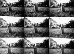 Fontefina festival @ Piane di Morro (AP) (svaboda!) Tags: biancoenero bw bn pinhole forostenopeico cartafotografica fontefinafestival pianedimorro ascolipiceno mietitura musicapopolare saltarellomarchigiano marche abruzzo