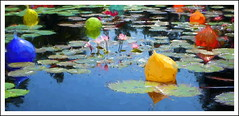 Lotus Pool (billackerman1) Tags: waterlily lotus paintcreations
