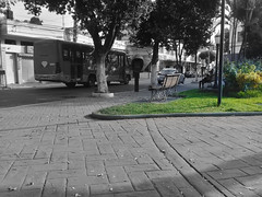 My Lonely Morning #3 (Guilherme Alex) Tags: city cityscape citylife citycenter cityview citymorning cityculture square central center green grass rocks blackandwhite sepia oldstyle tree leaves life live world teófilootoni minasgerais brazil amateur art benchs people seat pole bus lonely car citizen urban urbanization path plaza morning way samsung j2 prime garden lifelivingworld