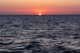 Lower Saxon Wadden Sea National Park   North Sea   Germany
