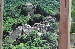 Photo by  Even Cool   #Calakmul #Biosphere #Reserve #Campeche #Mayan  #Must #Visit (Mexico to Discover) Tags: biosphere must campeche mayan visit calakmul reserve