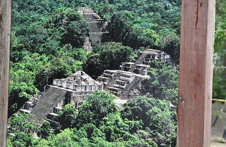Photo by  Even Cool   #Calakmul #Biosphere #Reserve #Campeche #Mayan  #Must #Visit