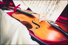 1828 Baroque violin (G. Postlethwaite esq.) Tags: 19thcentury baroque dof irish blanket bokeh bridge case depthoffield gutstrings music photoborder selectivefocus tailpiece violin