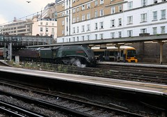 60009, 47760 VIC 1Y50 Dorset Coast Express - WEY 9-8-18 (2) (6089Gardener) Tags: victoria 60009 unionofsouthafrica a4 462 47760 class47