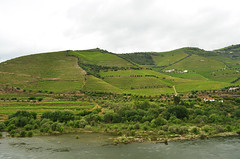 DOU_Quinta_de_Maraccos_view_01 (chiang_benjamin) Tags: dourovalley portugal vineyard port wine greenhill mountain river