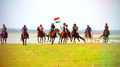 Happy Independence Day (Captured by Bachi) Tags: new me love horseride crosscountry polo horse horselove equestrians equestrian horses hyderabad august15 day independence indian india
