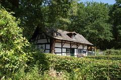 Verscholen. (limburgs_heksje) Tags: nederland netherlands niederlande limburg schinveldse bossen openluchtmuseum nonke buske grens grensstreek