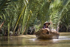 Cruising by boat in the Mekong Delta around Can Tho, Vietnam (Tim van Woensel) Tags: mekong canals water delta long boat lush fern palm vietnam asia travel woman