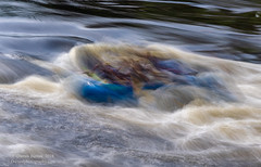 Rapid Reaction (Dwood Photography) Tags: rapid reaction rapidreaction dwoodphotography dwoodphotographycom abstract black river blackriver ny new york newyork blue yellow