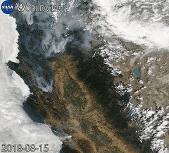 Animation of Northern California Fires over Time (sjrankin) Tags: 16august2018 edited nasa modis gif animatedgif worldview california northerncalifornia smoke fires wildfires 1220mb large