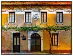 Warm Faded Grandeur (Jocelyn777) Tags: doorsandwindows architecturaldetails vine ochre terracotta textured historictowns villages towns cetinje montenegro balkans travel