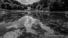 Bath Prior Park 2018 08 02 #17 (Gareth Lovering Photography 5,000,061) Tags: bath prior park nationaltrust gardens palladian bridge serpentine lakes viewpoint england olympus penf 14150mm 918mm garethloveringphotography