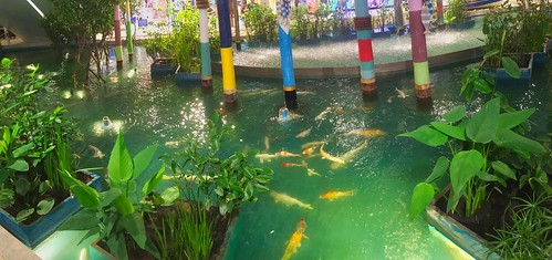 Koi pond with artificial waterfall in Bluport mall in Hua Hin, Thailand