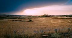 Tormenta a la vista (mariusbucsa) Tags: campo tormenta nubes cerveradelacañada aragón españa es verano tarde nikond5600 nikon nikkor35mm18g