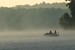 Into the Morning (Michael Allen Siebold (Getty Images Contributor)) Tags: fog kentucky outdoors photography watersedge woodland boat branch cravensbay fishing flag forest lake lakebarkley mist nature shore tree trees water woods