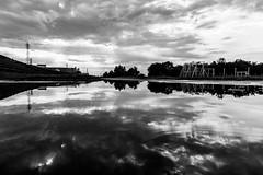 #223 After the rains (tokyobogue) Tags: tokyo japan arakawa riverbank puddles nikon nikond7100 d7100 sigma sigma1750mmexdcoshsm blackandwhite blackwhite monochrome weather sky clouds reflection reflections