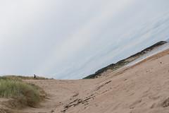 Dunbar-18081188 (Lee Live: Photographer (Personal)) Tags: dunbar dunbartownhouse firthofforth fishingboats harbour kidsplaying leelive leesimpson limetreewalkbeach lukesimpson marine ourdreamphotography playground propeller rachelsimpson sanddunes scotland shirleysimpson swimminginthesea tyninghamebeach wwwourdreamphotographycom