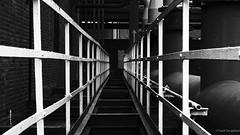 Go ahead (frankdorgathen) Tags: mirrorless sonyrx10iii sonyrx10m3 monochrome blackandwhite schwarzweiss schwarzweis industry industrie ruhrpott ruhrgebiet stoppenberg essen zechezollverein weitwinkel wideangle geländer railing perspektive perspective