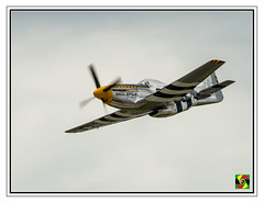 P-51 Mustang (Crested Aperture Photography) Tags: p51 worldwarii militaryaviation airshow aircraft pittsburgh pennsylvania