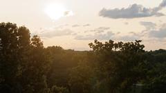 Vermont Evening (BenWestPhotography) Tags: vermont vt southburlingtonvt btv kbtv burlingtoninternationalairport canon canon40d tamron1750f28 tamronspaf1750mmf28xrdiiildasphericalif dxo dxoopticspro10 sunset evening trees