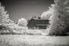 A Barn in Olympia in IR (ScottWoodPhotos) Tags: grass trees summer washington blackwhite sky ir olympia barn tumwater unitedstates us