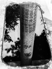 Tori reflection (tokyobogue) Tags: tokyo japan ikebukuro nikon nikond7100 d7100 35mmf18g gokokuji gokokujitemple temple buddhist blackandwhite blackwhite monochrome reflection water