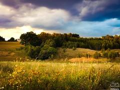 Lubelskie klimaty ;) Fujifilm X10 (adammo1990) Tags: krasnystaw lubelskie polskiekrajobrazy natura