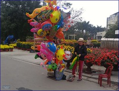 Vietnam, Hue City Balloons 20180213_141215 LG (CanadaGood) Tags: asia asean seasia vietnam vietnamese hue flowers balloon people person canadagood 2018 thisdecade color colour cameraphone