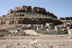 Al-Quariath (?) (motohakone) Tags: jemen yemen arabia arabien dia slide digitalisiert digitized 1992 westasien westernasia ٱلْيَمَن alyaman