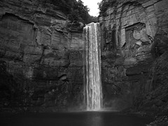 Ithaca New York (andrewethomp) Tags: hasselblad x1d blackandwhite black white x1d50c 45mm xcd45mm xcd45 wide angle ithaca waterfall hike medium format 645 rocks