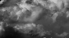 Hand Gliding (Phil Wood60) Tags: hand glider clouds storm