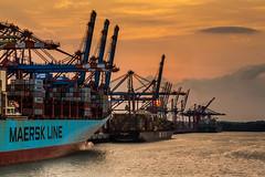 sunset (Fotos aus OWL) Tags: hamburg terminal containerterminal container ship schiffe hafen waltershof eurogate