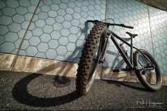 This bike is brutal... (PaulHoo) Tags: nikon d750 samyang 14mm wideangle ultrawideangle bicycle cycling shadow mtb mountainbike activelife health healthy exercise 2018 amsterdam forest amsterdamse bos