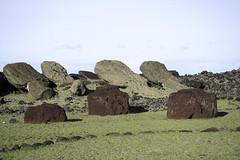 Fallen Moai and Topknots at Vaihu Archeological Site Easter Island Chile (Barbara Brundage) Tags: fallen moai topknots vaihu archeological site easter island chile