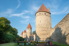 Four Towers - West Side - Tallinn - Late Afternoon (BlueVoter - thanks for 2.1M views) Tags: tallinn estonia eesti tower medieval wall