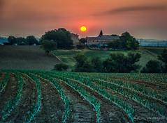 Italian country (Luca-Anconetani) Tags: rural country italy sunrise luca anconetani landscapes paesaggio panorama house sun alba themarches travel regionemarche
