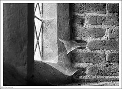 Cobwebs In The Window 233/365 (John Penberthy ARPS) Tags: d750 oxfordshire window old mono johnpenberthy greyscourt 3652018 henleyonthames monochrome 365the2018edition nationaltrust day233365 bricks 21aug18 nikon blackandwhite cobweb sill