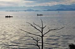 pescadores (Ruby Ferreira ®) Tags: baía bay pescadores fishermen ripples layers hills montanhas barcos boats tree branches silhuetas silhouettes