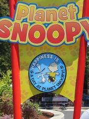 IMG_1502 (earthdog) Tags: 2018 canon powershot sx730hs canonpowershotsx730hs needstags needstitle amusementpark greatamerica santaclara