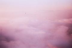 Anticipation (Tamar Burduli) Tags: analog film color 35mm sky clouds cloudporn skyscape pink travel fly flying poland tamarburduli zenit kodak nature