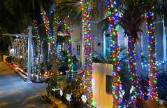 Key West (Florida) Trip 2017 8013Ri 4x6 (edgarandron - Busy!) Tags: florida keys floridakeys keywest house houses buildings christmas lights decorations