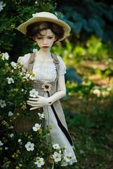 DSC_4786 (peregrina_tyss) Tags: bjd dollstown elf dim annabeth dollinmind