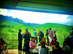 Brinchang, 39000 Brinchang, Pahang https://goo.gl/maps/2yXk16L8fzE2  #travel #holiday #trip #traveling #旅行 #度假 #亞洲 #Asian #여행 #ホリデー #праздник #วันหยุด #Malaysia #restaurant #餐馆 #ร้านอาหาร #レストラン #ресторан #Restoran #식당 #travelMalaysia #馬來西亞旅行 #馬來西亞 #金马仑 # (soonlung81) Tags: trip cameronhighland วันหยุด 餐馆 malaysia 馬來西亞 旅行 馬來西亞旅行 restoran 식당 ресторан restaurant 여행 asian 度假 traveling ร้านอาหาร 金马仑 ホリデー праздник holiday مطعم レストラン travelmalaysia 亞洲 travel