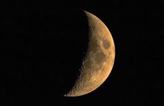 Moon (Torok_Bea) Tags: moon moonshot lovely hold natur nature tamron nikon nikond7200 d7200 night home lune