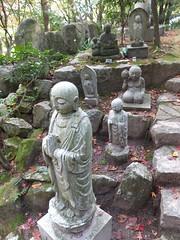 a (35) (hiromi89) Tags: japan beauty beautiful scenery flower wood pond