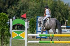 A9909915_s (AndiP66) Tags: springen dubenmoos 2018 18august2018 august pferd horse schweiz switzerland kantonsolothurn cantonsolothurn concours wettbewerb horsejumping equestrian sports springreiten pferdespringen pferdesport sport sony alpha sonyalpha 99markii 99ii 99m2 a99ii ilca99m2 slta99ii sony70400mm f456 sony70400mmf456gssmii sal70400g2 amount andreaspeters csdubenmoos