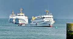 Helgoland: Warten auf Passagiere (antje whv) Tags: helgoland hafen schiffe ships boote boats nordsee northsea