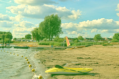 2018 Eiland van Maurik (Steenvoorde Leen - 14.1 ml views) Tags: 2018eilandvanmaurik 100jaarcitroen surfen surfplank betuwe holland the netherlands watersport citroennederlandevent citroen nederlandmeeting citroenfrench car people frenchcar franzosicheauto autofrancese cochefrances carrofrances