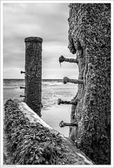 Damaged Defences 234/365 (John Penberthy ARPS) Tags: blackandwhite 3652018 d750 nikon monochrome sussex mono 22aug18 day234365 beash 365the2018edition seaside eastwittering sea johnpenberthy